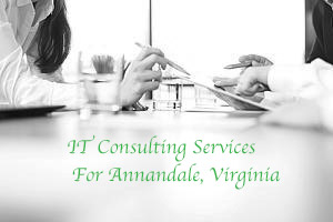 IT consulting services for Annandale, Virginia