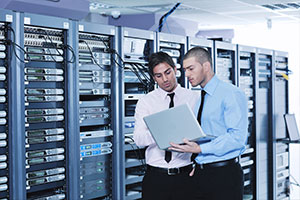 employees checking cybersecurity